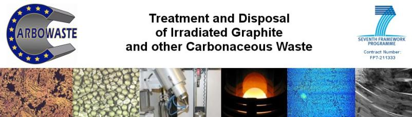 Treatment and Disposal of Irradiated Graphite and 